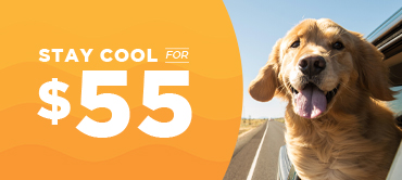 Stay Cool for $55